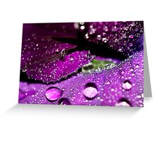 Velvet Sparkles Greeting Card