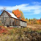 Old Barn by Dave Law