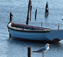 One Blue Boat by kalaryder