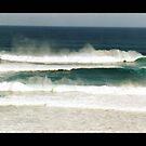 Surf by evapod