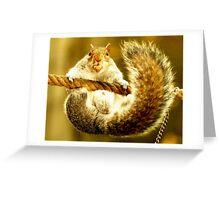 Squirrel scramble 4 Greeting Card