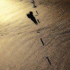 Shadows & Gold IV by Duncan Waldron