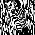 Zebra One by Alan Hogan