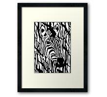 Zebra One Framed Print