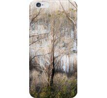 Four Seasons 4 iPhone Case/Skin