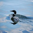 Loony Loon II by zachdier