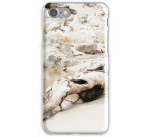 Wilsons Promontory iPhone Case/Skin