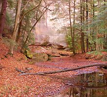 Fall at Hocking Hills by Jason Vickers
