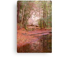 Fall at Hocking Hills Canvas Print