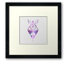 Shared fandom [Harry Potter and The Legend of Zelda] Framed Print