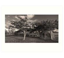Landscape in Vieques, Puerto Rico Art Print