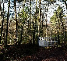 the Little White Gate by Country  Pursuits
