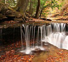 Autumn Riffles by BigD