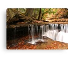 Autumn Riffles Canvas Print