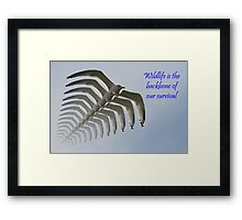 Wildlife Is The Backbone of our Survival Framed Print