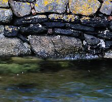Busta Harbour Wall by Richard Ion