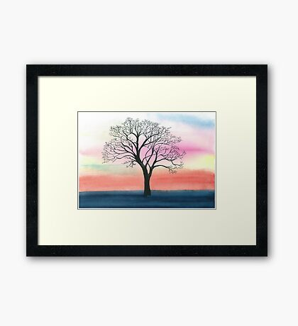 Winter oak  Framed Print