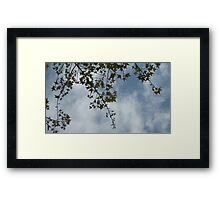 A golden Spring 2 Framed Print