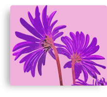 Wild Flowers in Abstract Colors Pink and Purple From Behind Canvas Print