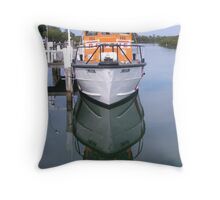 Reflection of a Rescue Throw Pillow