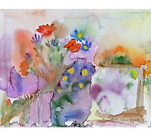 Kirsti's garden Photographic Print