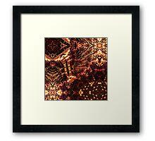 Phoenicis #13 Framed Print