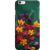 The World of Tiny Flowers iPhone Case/Skin