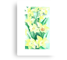 Daffodils out of the picture Canvas Print