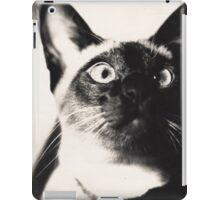 Abang ... the best cat in the world iPad Case/Skin