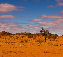Coober Pedy Landscape. by trevorb