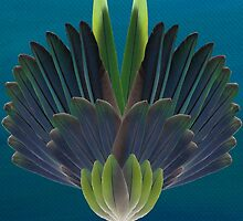 Quaker parrot feathers by Bwiselizzy