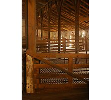Bungaree Woolshed Photographic Print