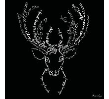 Deer stag antlers typographic Photographic Print