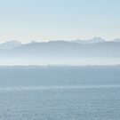 Mist over the Bodensee by Arie Koene