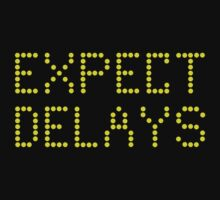 Expect Delays by Harvey Schiller