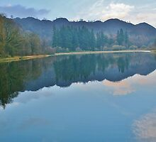Reflections On Yew Tree Tarn - Lake District by Rod Unwin