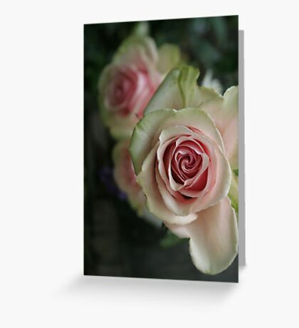 """""""gentle on my mind"""" Greeting Card"""