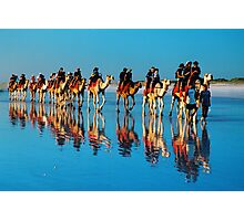 camels on cable beach Photographic Print