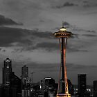 Seattle Sky Line by dbschanck