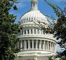 Capitol - Washington DC by Renee Hubbard Fine Art Photography
