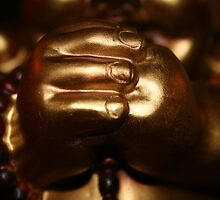 buddha hands by missv