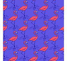 Fifties Flamingo Photographic Print