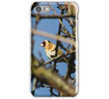 Goldfinches among branches iPhone Case/Skin
