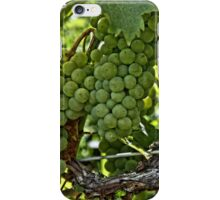 Wine Grapes iPhone Case/Skin