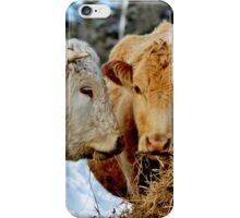 The Mr. & Mrs. Dinning Out iPhone Case/Skin