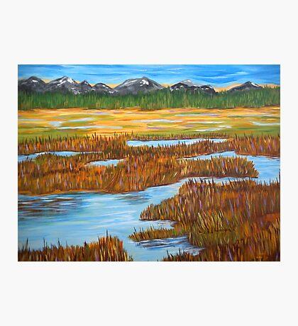 Marshlands landscape painting impressionism art Photographic Print