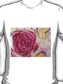 White Pink rose with petals T-Shirt