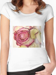 White Pink rose with petals 3 Women's Fitted Scoop T-Shirt