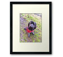 Girl's Best Friend Framed Print