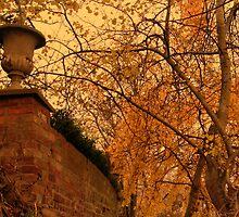 Autumn  by strangebeauty
